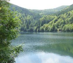 Campingplatz Clos De La Chaume: Lac Du Grand Ballon Lac Des Vosges