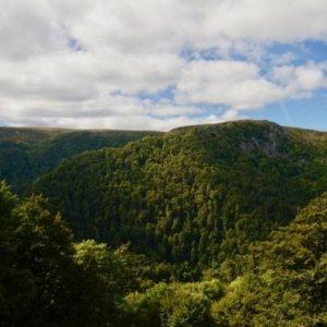Campingplatz Clos De La Chaume: Panorama Vogesen