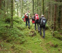 Campingplatz Clos De La Chaume: Familienwandern in den Vogesen