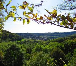 Campingplatz Clos De La Chaume: Blick von Montenach